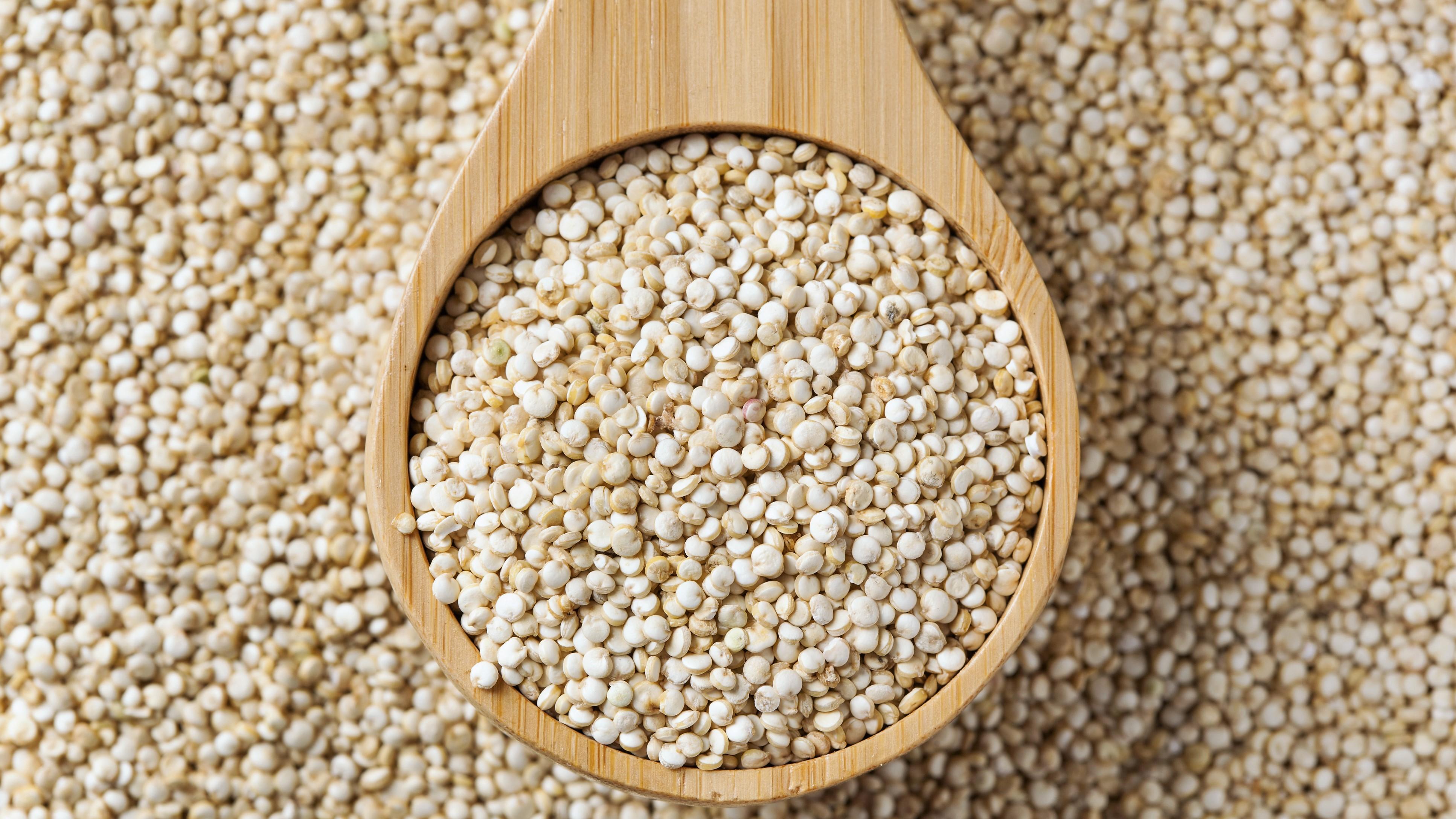 10 golose ricette a base di quinoa